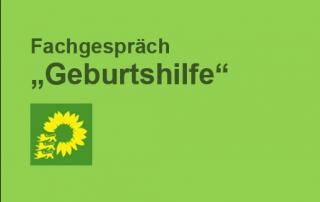 3.1_180305_FachG_Geburtshilfe_Gruene_Stg